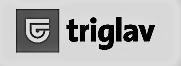 triglavBW